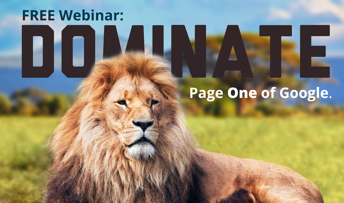 Dentists: Learn to Dominate Page One of Google
