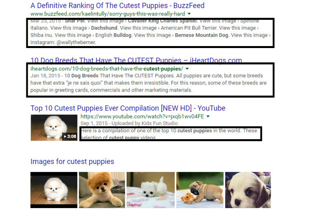 Photo of search reesults with meta descriptions circled.